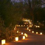 Đèn nấm trang trí sân vườn và đèn cây thông